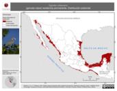 Mapa ilustrativo de Egretta rufescens (garceta rojiza) residencia permanente. Distribución potencial.