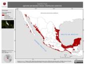Mapa ilustrativo de Egretta thula (garceta pie-dorado) verano. Distribución potencial.