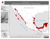 Mapa ilustrativo de Egretta tricolor (garceta tricolor) residencia permanente. Distribución potencial.