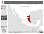 Mapa ilustrativo de Eleutherodactylus cystignathoides (Rana chirriadora mexicana). Área de distribución potencial. La proyección citada, es exclusiva para el diseño de esta imagen.