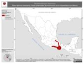 Mapa ilustrativo de Eleutherodactylus mexicanus (Rana ladrona mexicana). Área de distribución potencial. La proyección citada, es exclusiva para el diseño de esta imagen.