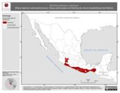 Mapa ilustrativo de Eleutherodactylus rugulosus (Rana ladrona centroamericana). Área de distribución potencial. La proyección citada, es exclusiva para el diseño de esta imagen.