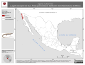 Mapa ilustrativo de Elgaria multicarinata (Lagarto escorpión del Sur). Área de distribución potencial. La proyección citada, es exclusiva para el diseño de esta imagen.