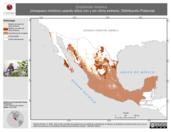 Mapa ilustrativo de Empidonax minimus (mosquero mímimo) usando sitios con y sin clima extremo. Distribución Potencial