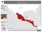 Mapa ilustrativo de Empidonax albigularis (mosquero garaganta blanca) en época de anidación del Hemisferio Norte. Distribución potencial.