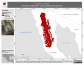 Mapa ilustrativo de Empidonax difficilis (mosquero californiano) verano. Distribución potencial.