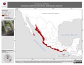 Mapa ilustrativo de Empidonax difficilis (mosquero californiano) invierno. Distribución potencial.