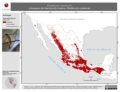 Mapa ilustrativo de Empidonax hammondii (mosquero de Hammond) invierno. Distribución potencial.