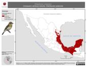 Mapa ilustrativo de Empidonax virescens (mosquero verdoso) tránsito. Distribución potencial.