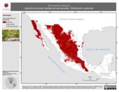 Mapa ilustrativo de Eremophila alpestris (alondra cornuda) residencia permanente. Distribución potencial.