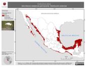 Mapa ilustrativo de Eudocimus albus (ibis blanco) residencia permanente. Distribución potencial.