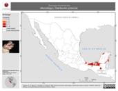 Mapa ilustrativo de Eumops bonariensis (Murciélago). Distribución potencial.