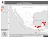 Mapa ilustrativo de Eumops glaucinus (Murciélago). Distribución potencial.