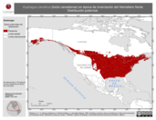 Mapa ilustrativo de Euphagus carolinus (tordo canadiense) en época de invernación del Hemisferio Norte. Distribución potencial.