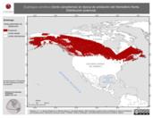 Mapa ilustrativo de Euphagus carolinus (tordo canadiense) en época de anidación del Hemisferio Norte. Distribución potencial.