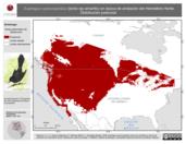 Mapa ilustrativo de Euphagus cyanocephalus (tordo ojo amarillo) en época de anidación del Hemisferio Norte. Distribución potencial.