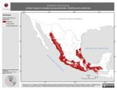 Mapa ilustrativo de Euthlypis lachrymosa (chipe roquero) residencia permanente. Distribución potencial.