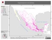 Mapa ilustrativo de Evapotranspiración real (isolineas)