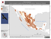 Mapa ilustrativo de Falco peregrinus (halcón peregrino) usando sitios con y sin clima extremo. Distribución Potencial