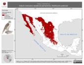 Mapa ilustrativo de Falco mexicanus (halcón mexicano) residencia permanente. Distribución potencial.