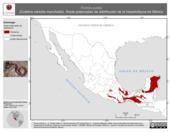 Mapa ilustrativo de Ficimia publia (Culebra naricilla manchada). Área de distribución potencial. La proyección citada, es exclusiva para el diseño de esta imagen.