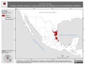 Mapa ilustrativo de Ficimia streckeri (Culebra naricilla mexicana). Área de distribución potencial. La proyección citada, es exclusiva para el diseño de esta imagen.