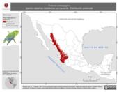 Mapa ilustrativo de Forpus cyanopygius (perico catarina) residencia permanente. Distribución potencial.