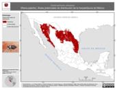 Mapa ilustrativo de Gastrophryne olivacea (Rana pajarito). Área de distribución potencial. La proyección citada, es exclusiva para el diseño de esta imagen.