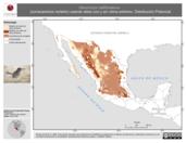 Mapa ilustrativo de Geococcyx californianus (correcaminos norteño) usando sitios con y sin clima extremo. Distribución Potencial
