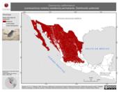 Mapa ilustrativo de Geococcyx californianus (correcaminos norteño) residencia permanente. Distribución potencial.