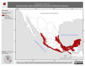 Mapa ilustrativo de Geotrygon montana (paloma-perdiz rojiza) residencia permanente. Distribución potencial.