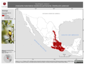 Mapa ilustrativo de Geothlypis nelsoni (mascarita matorralera) residencia permanente. Distribución potencial.