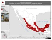Mapa ilustrativo de Geothlypis poliocephala (mascarita pico grueso) residencia permanente. Distribución potencial.