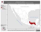 Mapa ilustrativo de Glyphorynchus spirurus (trepatroncos pico cuña) residencia permanente. Distribución potencial.