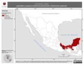 Mapa ilustrativo de Granatellus sallaei (granatelo yucateco) residencia permanente. Distribución potencial.
