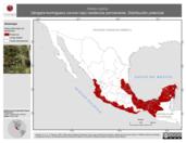 Mapa ilustrativo de Habia rubica (tángara-hormiguero corona roja) residencia permanente. Distribución potencial.