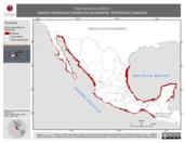 Mapa ilustrativo de Haematopus palliatus (ostrero americano) residencia permanente. Distribución potencial.