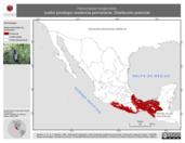 Mapa ilustrativo de Heliomaster longirostris (colibrí picolargo) residencia permanente. Distribución potencial.