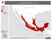 Mapa ilustrativo de Herpailurus yaguaroundi (Leoncillo, jaguaroundi). Distribución potencial. La proyección citada, es exclusiva para el diseño de esta imagen.