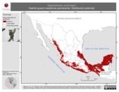 Mapa ilustrativo de Herpetotheres cachinnans (halcón guaco) residencia permanente. Distribución potencial.