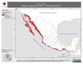 Mapa ilustrativo de Tringa incana (playero vagabundo) invierno. Distribución potencial.
