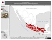 Mapa ilustrativo de Hirundo rustica (golondrina tijereta) invierno. Distribución potencial.