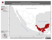 Mapa ilustrativo de Hylophilus decurtatus (verdillo gris) residencia permanente. Distribución potencial.