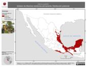 Mapa ilustrativo de Icterus gularis (bolsero de Altamira) residencia permanente. Distribución potencial.