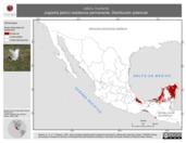 Mapa ilustrativo de Jabiru mycteria (cigüeña jabirú) residencia permanente. Distribución potencial.