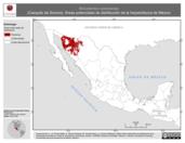 Mapa ilustrativo de Kinosternon sonoriense (Casquito de Sonora). Área de distribución potencial. La proyección citada, es exclusiva para el diseño de esta imagen.