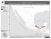 Mapa ilustrativo de Laemanctus longipes (Lemacto coludo). Área de distribución potencial. La proyección citada, es exclusiva para el diseño de esta imagen.