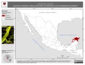 Mapa ilustrativo de Laemanctus serratus (Lemacto coronado). Área de distribución potencial. La proyección citada, es exclusiva para el diseño de esta imagen.