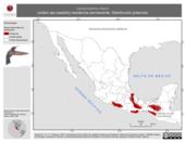 Mapa ilustrativo de Lamprolaima rhami (colibrí ala castaña) residencia permanente. Distribución potencial.