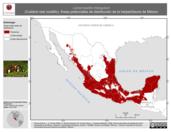 Mapa ilustrativo de Lampropeltis triangulum (Culebra real coralillo). Área de distribución potencial. La proyección citada, es exclusiva para el diseño de esta imagen.